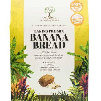 natural evolution banana-bread